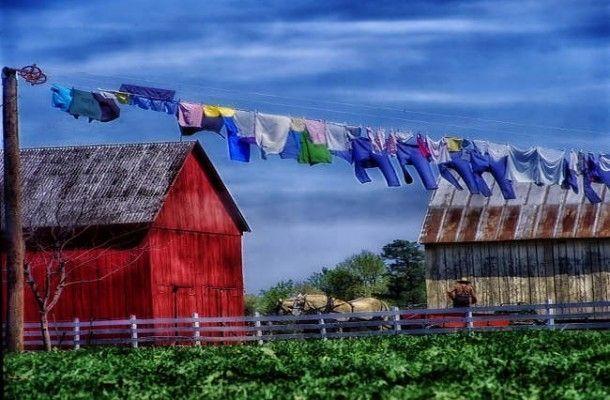 trabajar-granja-irlanda