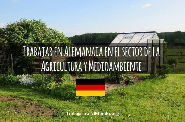 alemania-trabajo-campo
