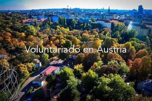 voluntariado-en-austria