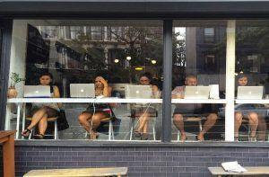 escribir un blog