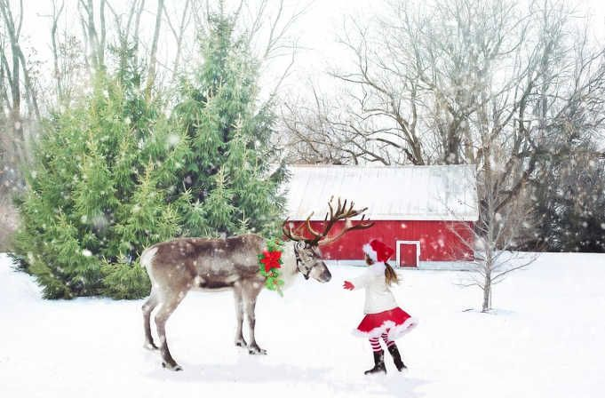 En NavidadDónde De Trabajar Navidad Encontrar Oportunidades Empleo SAjLc3Rq54