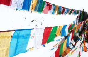 becas Dalai Lama