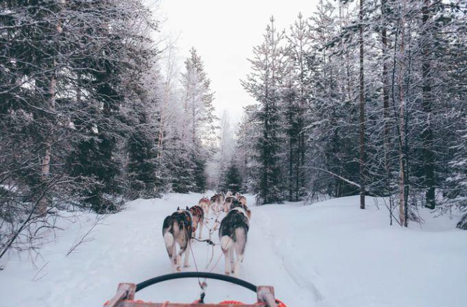 vacaciones gratis en Finlandia para aprender a ser feliz