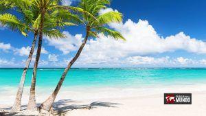 Voluntariados Bahamas con Airbnb