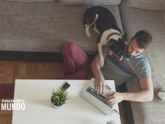 errores que debes evitar al trabajar desde casa