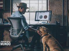 Guía para trabajar como Growth Hacker