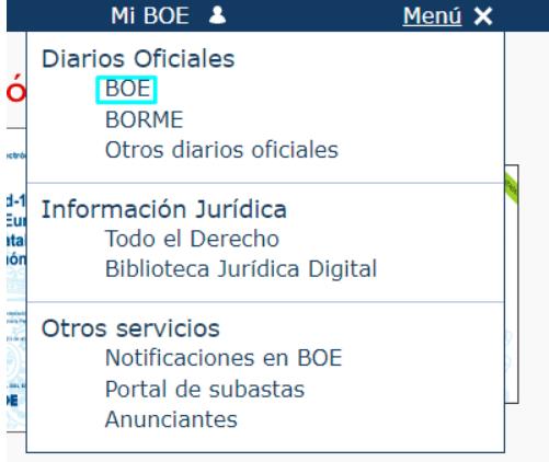 Qué información se publica en el Boletín Oficial del Estado