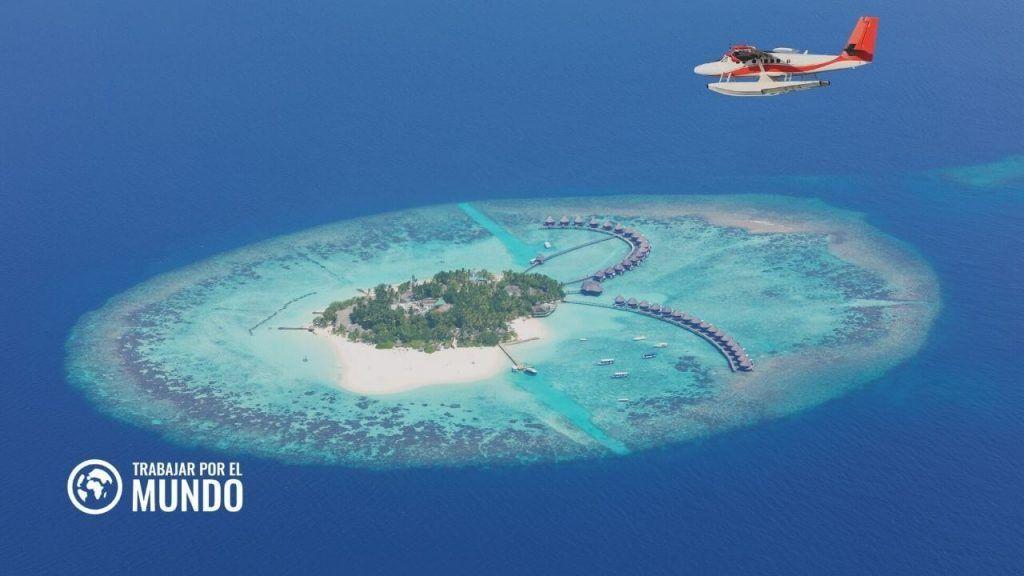 Un resort de Maldivas busca librero para trabajar en el paraíso