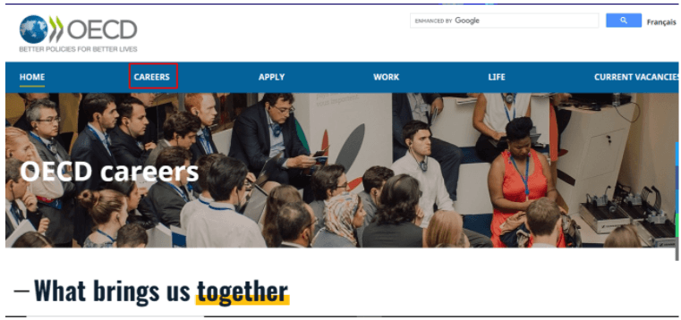 OCDE Empleo internacional
