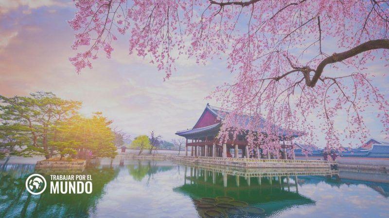 TOPIK: Cómo es el examen oficial de coreano