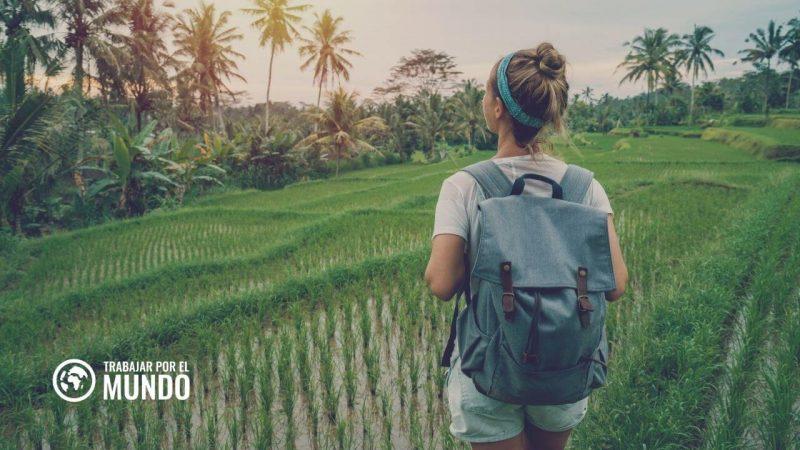 Estudiar en Indonesia