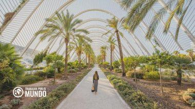 LABORA Valencia: Ofertas de empleo